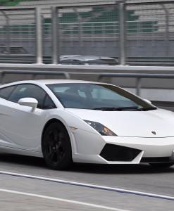 Lamborghini_Gallardo_LP560